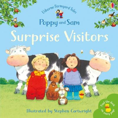 Surprise Visitors (Mini Farmyard Tales) by Heather Amery image