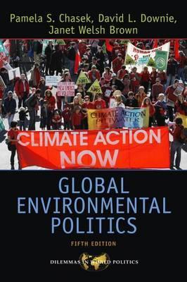Global Environmental Politics by Pamela S Chasek image