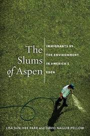 The Slums of Aspen by Lisa Sun-Hee Park
