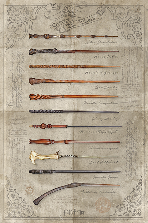 Harry Potter Maxi Poster - The Wand Chooses (886)