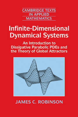 Infinite-Dimensional Dynamical Systems by James C Robinson