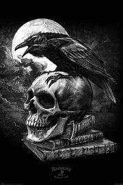 Alchemy (Poe's Raven) (720)