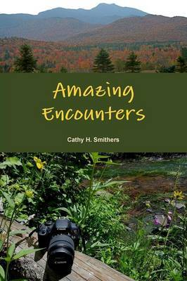 Amazing Encounters by Cathy H. Smithers image