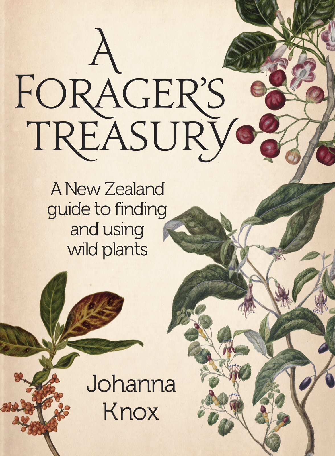 A Forager\'s Treasury | Johanna Knox Book | In-Stock - Buy Now | at ...