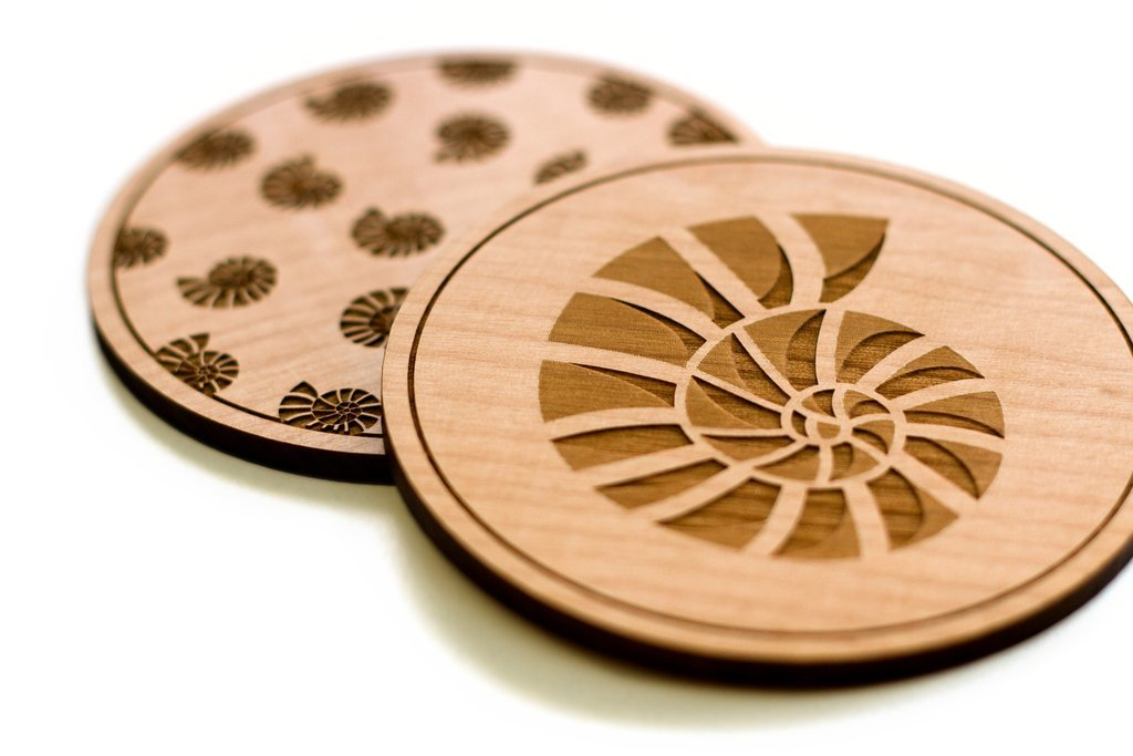 Cardtorial Shells Coasters image