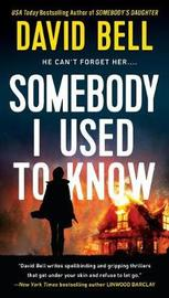 Somebody I Used To Know by David Bell image