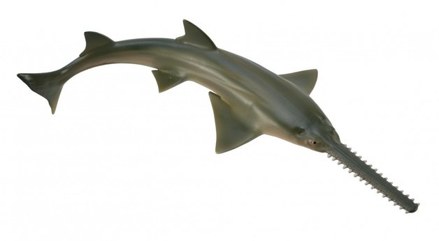 CollectA - Sawfish
