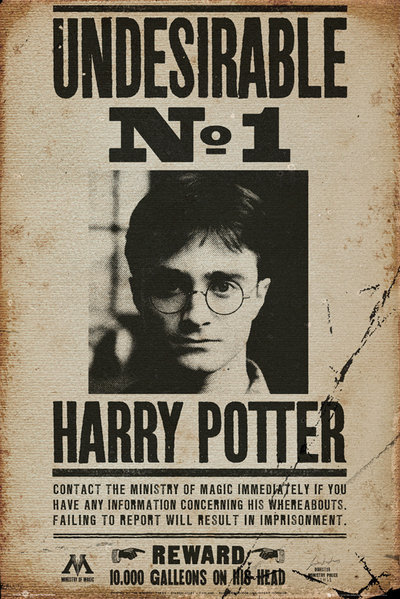 Harry Potter Maxi Poster - Undesirable (519)
