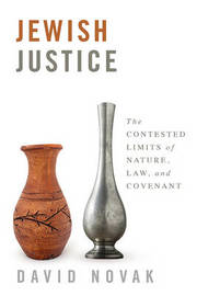 Jewish Justice by David Novak