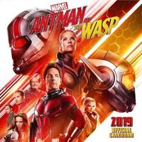 Marvel: Antman and the Wasp 2019 Square Wall Calendar
