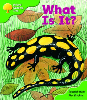 Oxford Reading Tree: Stage 2: More Patterned Stories A: What is It? by Roderick Hunt image