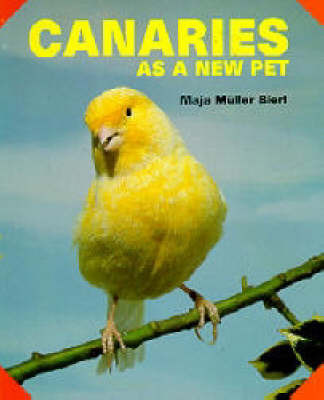 Canaries as a New Pet by Maja Muller-Bierl image