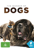 The Wonder of Dogs DVD