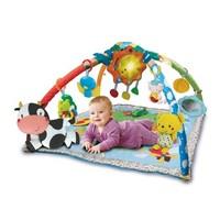 VTech: Little Friendlies 2-in-1 Baby Gym