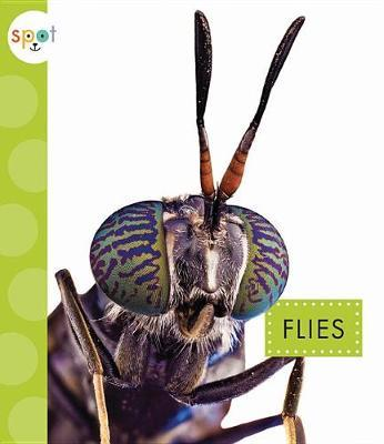 Flies by Nessa Black