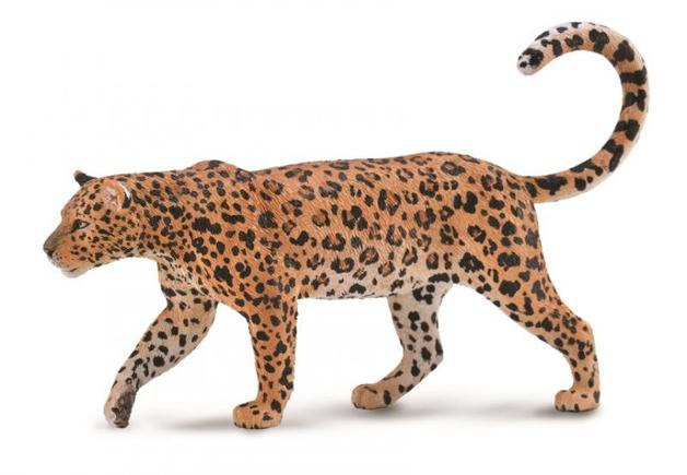 CollectA - African Leopard (XL)