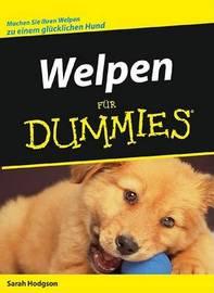 Welpen Fur Dummies by S. Hodgson image