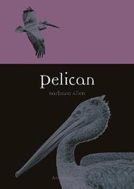 Pelican by Barbara Allen