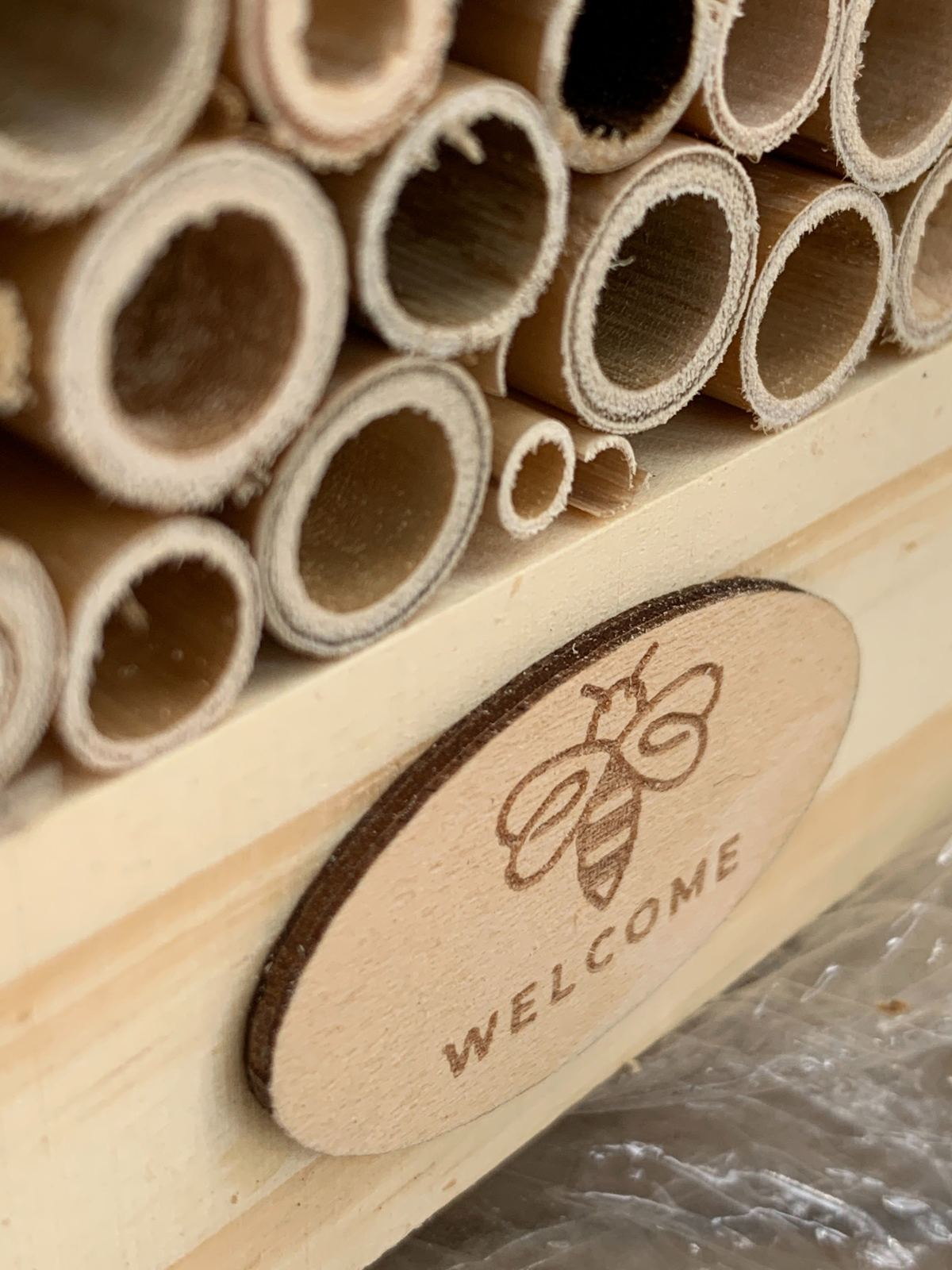 Welcome Buzz Bee Hotel image
