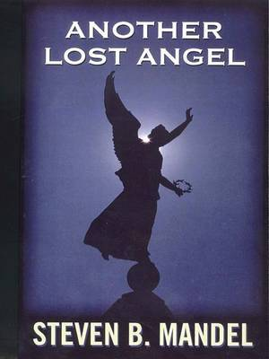 Another Lost Angel by Steven B. Mandel image