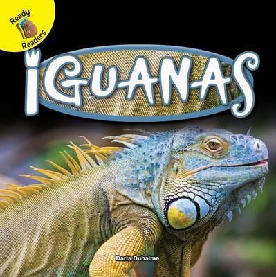 Iguanas by Darla Duhaime