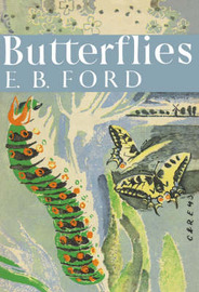 Butterflies by E.B. Ford image