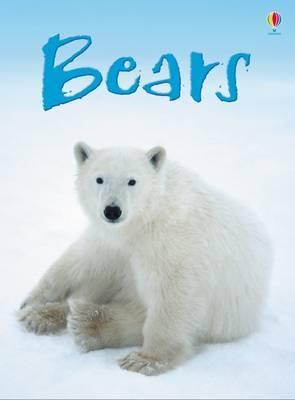 Bears by Emma Helborough