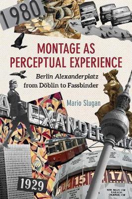 Montage as Perceptual Experience by Mario Slugan