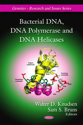 Bacterial DNA, DNA Polymerase and DNA Helicases image