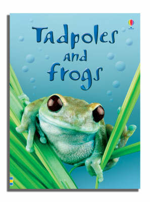 Tadpoles and Frogs by Anna Milbourne image