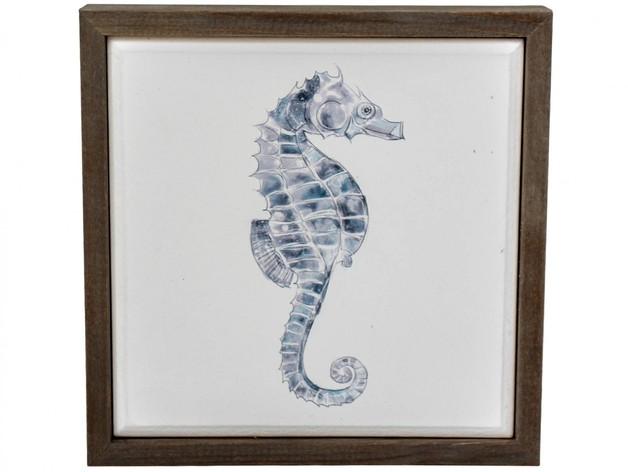 LaVida: Framed Canvas (Seahorse)