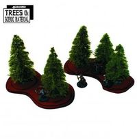 Young Fir Trees x5
