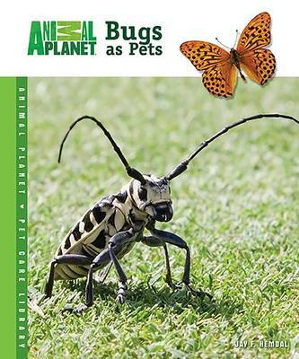 Bugs as Pets by Jay F Hemdal