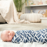 Aden + Anais: Silky Soft Bamboo Swaddle - Seaport (3 Pack) image