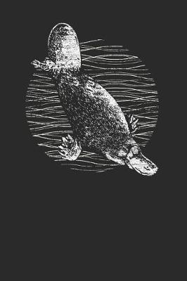 Platypus Drawing by Platypus Publishing