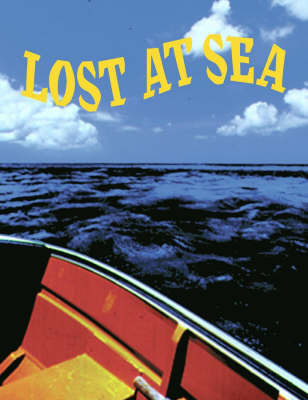 Lost at Sea by Jossey-Bass Pfeiffer image