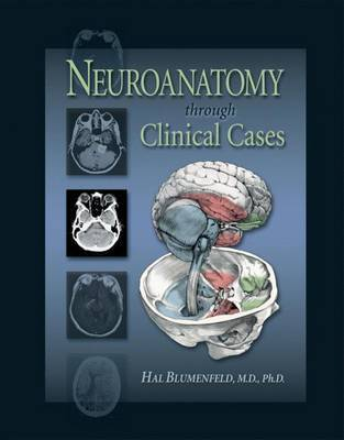 Neuroanatomy Through Clinical Cases by Hal Blumenfeld image