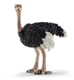 Schleich: Ostrich