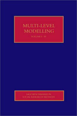 Multilevel Modelling image