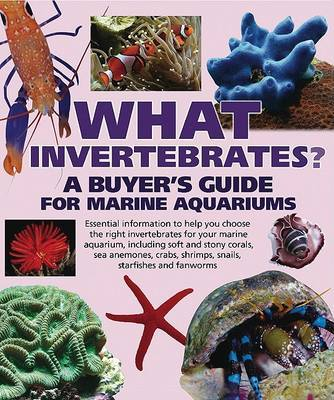 What Invertebrates? by Tristan Lougher