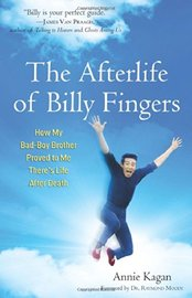 Afterlife of Billy Fingers by Annie Kagan