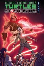 Teenage Mutant Ninja Turtles / Ghostbusters 3 by Erik Burnham