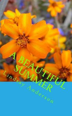 A Beautiful Summer by Lindsay Anderson