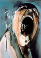 Pink Floyd Maxi Poster - The Wall (891)