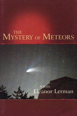 The Mystery of Meteors by Eleanor Lerman image
