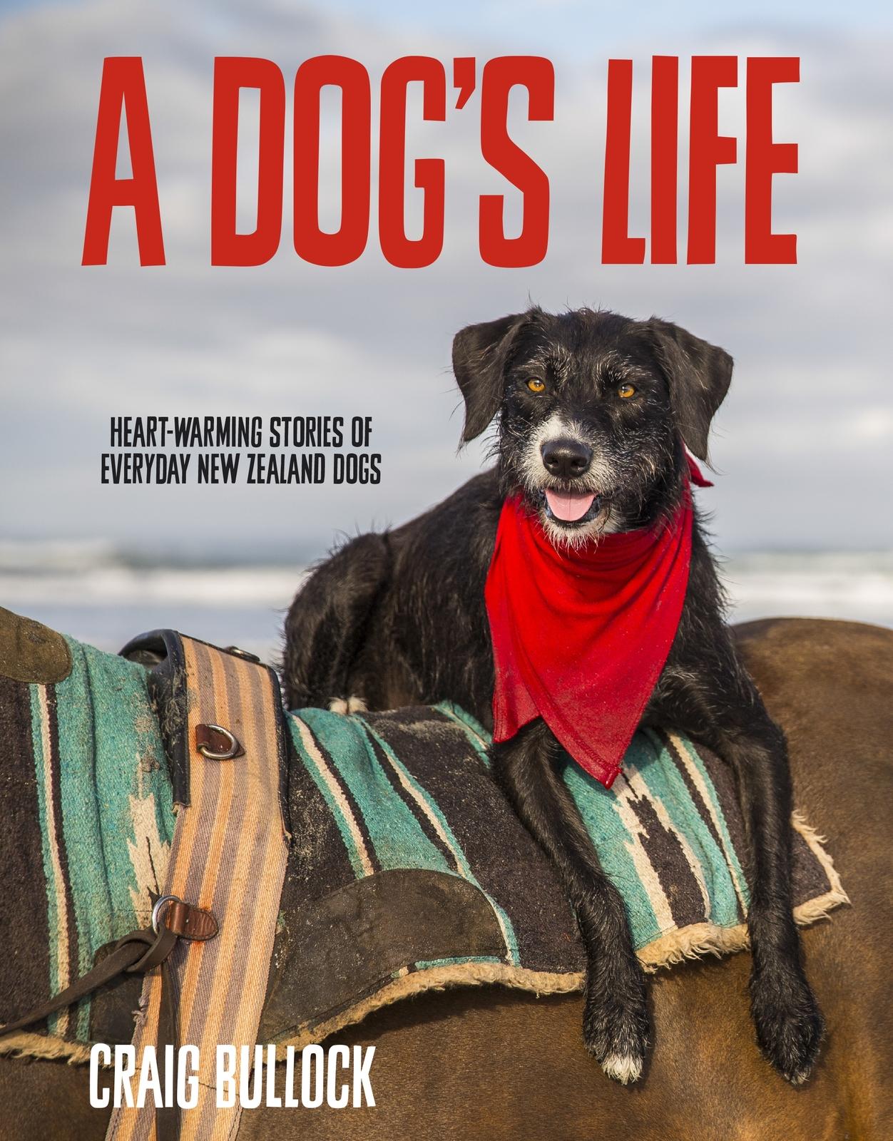 A Dog's Life by Craig Bullock image