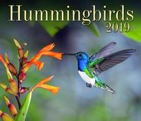 Hummingbirds 2019 by Firefly Books