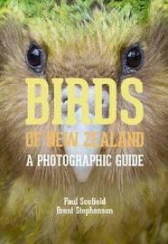 Birds of New Zealand by Paul Scofield
