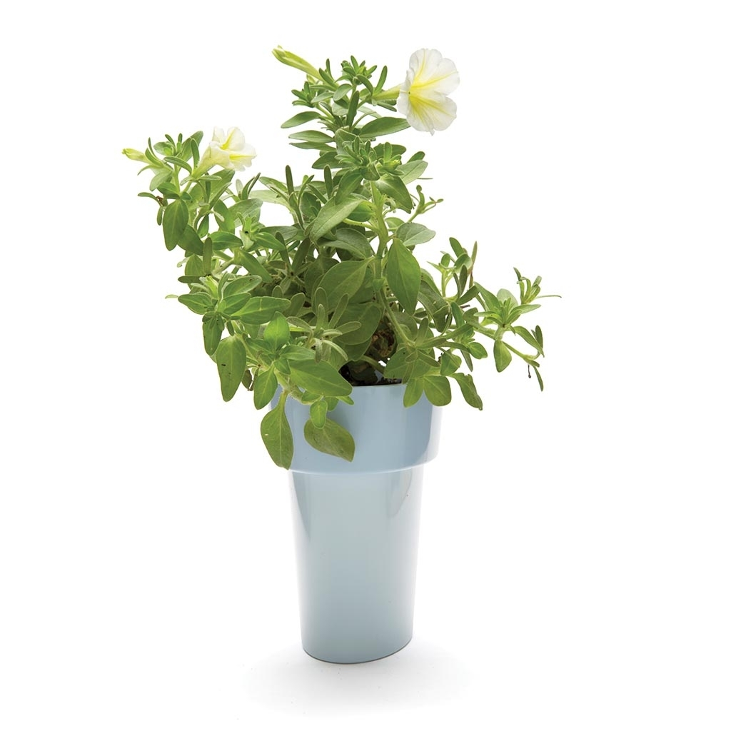 Monkey Business: Slim Flower Pot (Blue) image