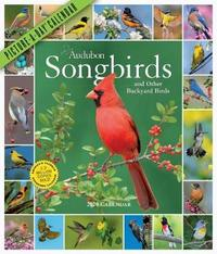 Audubon Songbirds and Other Backyard Birds Picture-A-Day Wall Calendar 2020 by National Audubon Society